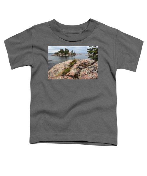 Killarney-island-pink Rocks-4539 Toddler T-Shirt
