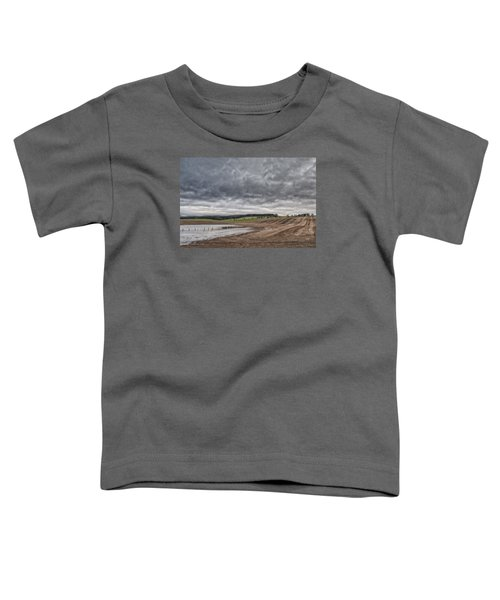 Kingdom Of Fife Toddler T-Shirt by Jeremy Lavender Photography
