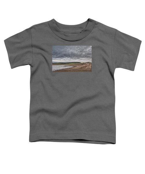 Kingdom Of Fife Toddler T-Shirt