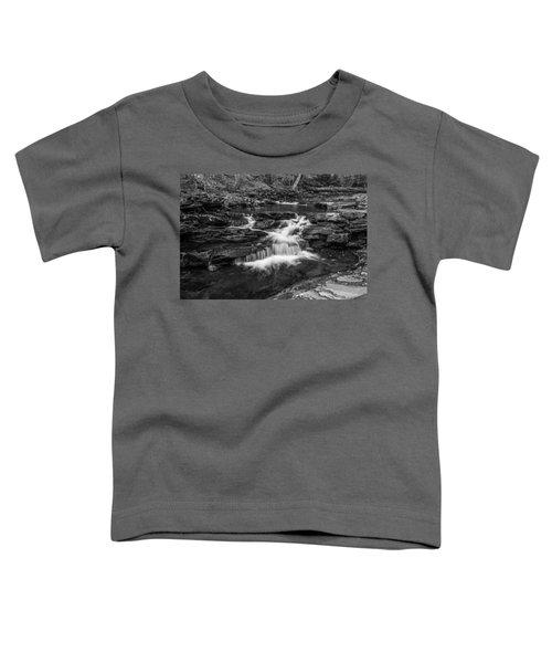 Kitchen Creek - 8902 Toddler T-Shirt