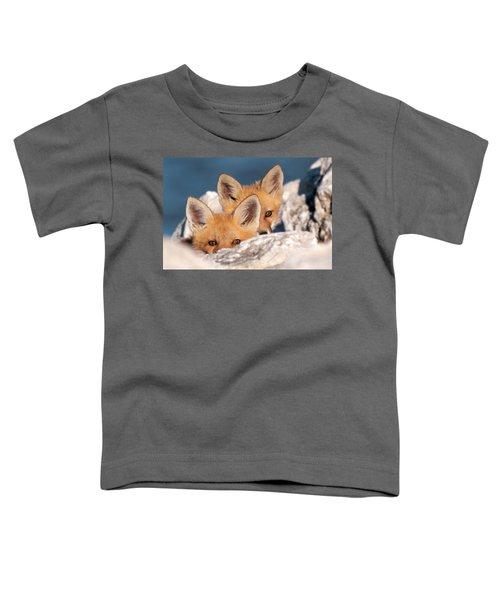 Kits Toddler T-Shirt