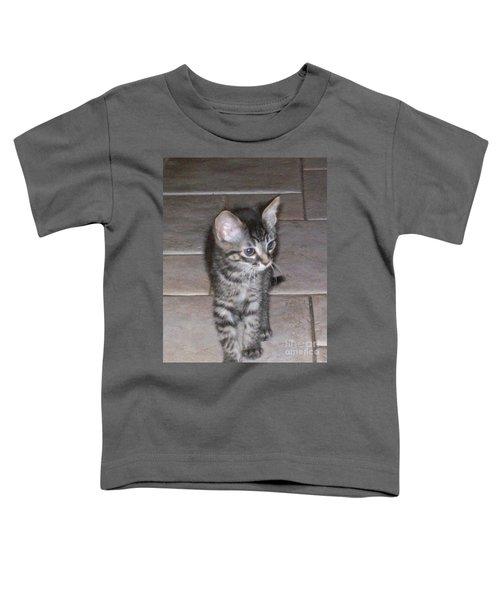 Martius Kitten Toddler T-Shirt