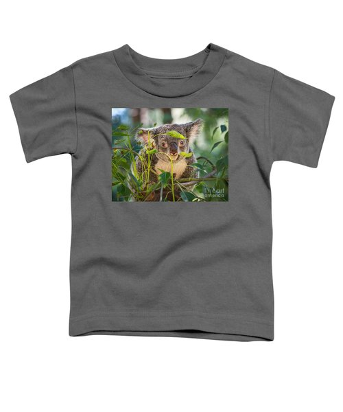 Koala Leaves Toddler T-Shirt by Jamie Pham