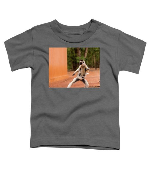 Kung Fu Mom Toddler T-Shirt by Alex Lapidus