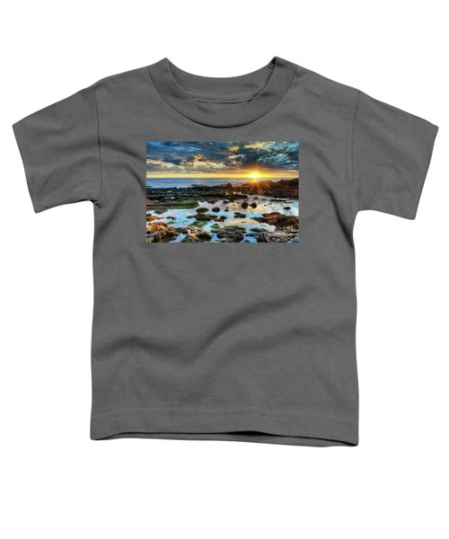 Laguna Beach Tidepools Toddler T-Shirt