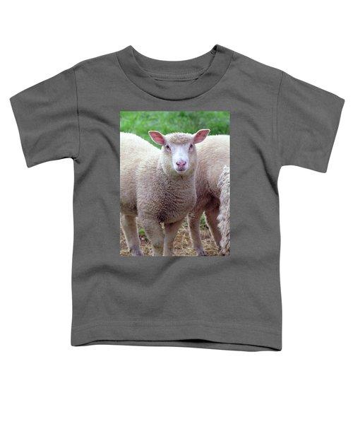 Lamb Toddler T-Shirt
