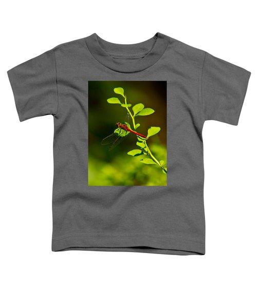 Landing Pad Toddler T-Shirt