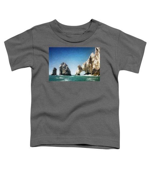 Lands End Toddler T-Shirt