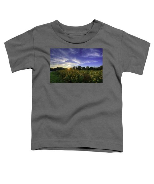 Last Rays Over The Flowers Toddler T-Shirt