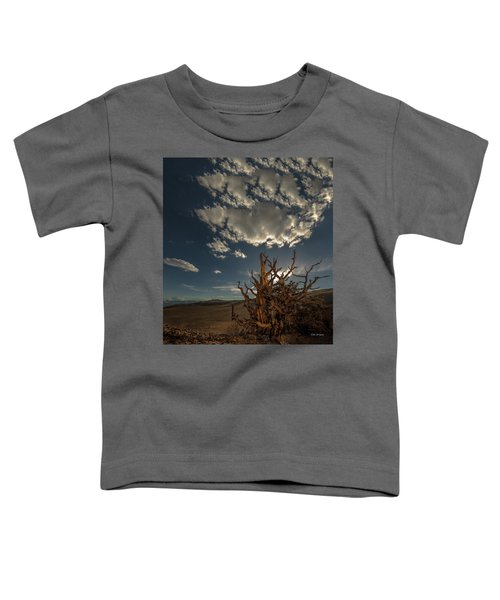 Late Afternoon In The Bristlecone Forest Toddler T-Shirt