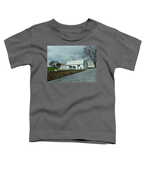 Laundry Day - Two Toddler T-Shirt