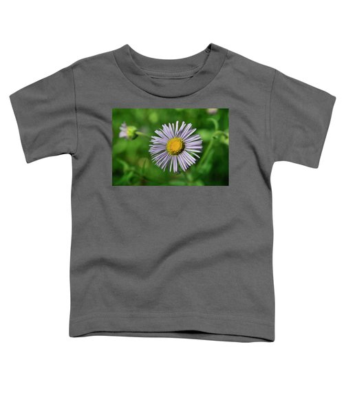 Lavender Serenity Toddler T-Shirt