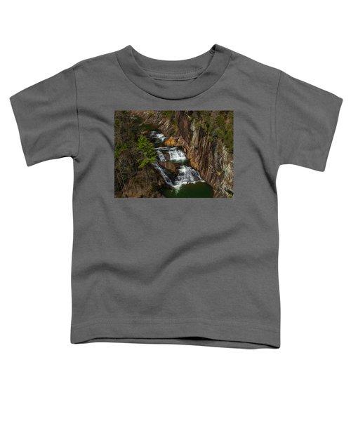L'eau D'or Falls Toddler T-Shirt