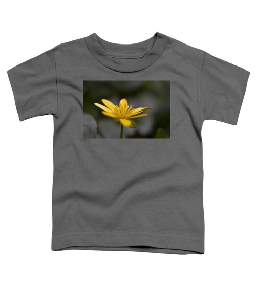 Lesser Celandine Toddler T-Shirt