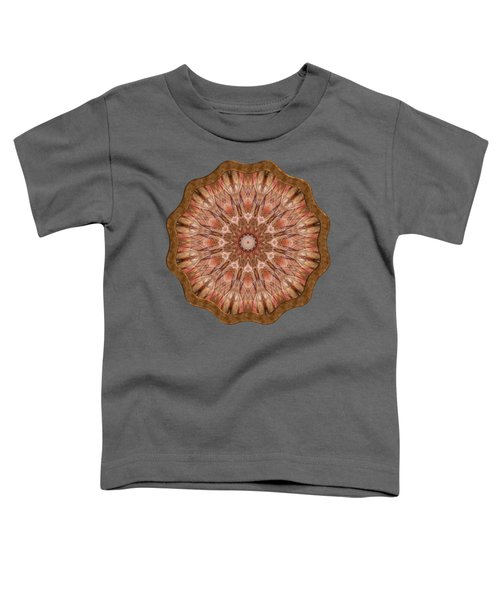 Ley Lines Toddler T-Shirt