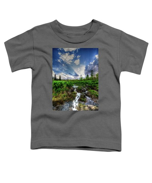 Life Giving Stream Toddler T-Shirt