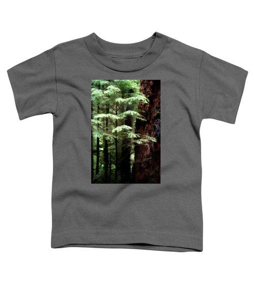 Light On Trees Toddler T-Shirt