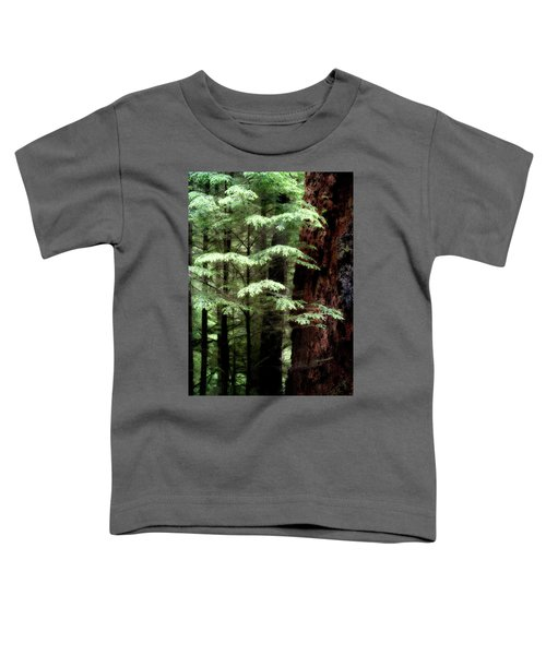 Light On Trees Toddler T-Shirt