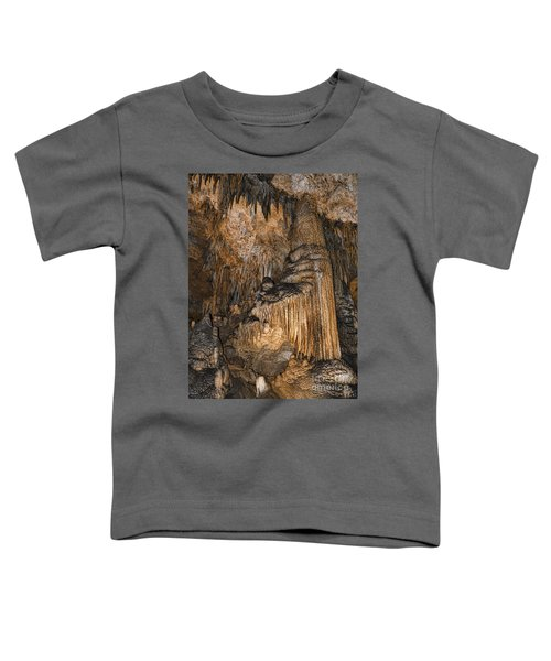 Like Organ Pipes They Stand Toddler T-Shirt