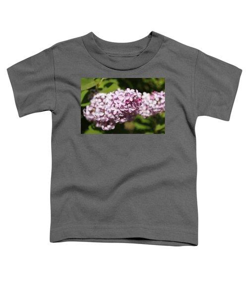 Lilacs 5549 Toddler T-Shirt