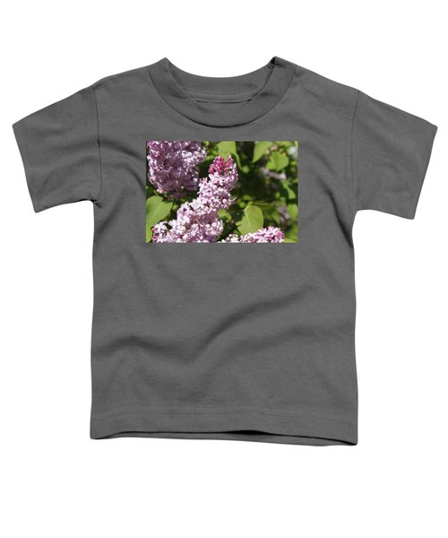 Lilacs 5552 Toddler T-Shirt