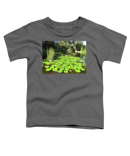 Lilies Of Bok Gardens Toddler T-Shirt