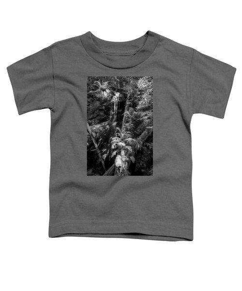 Limited And Restricted Toddler T-Shirt