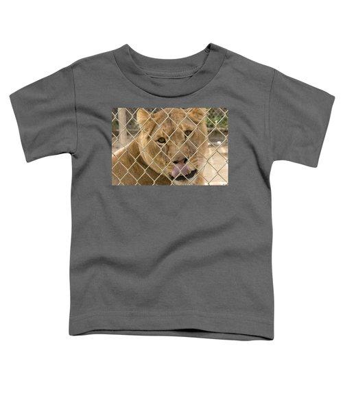Lioness Licks Toddler T-Shirt
