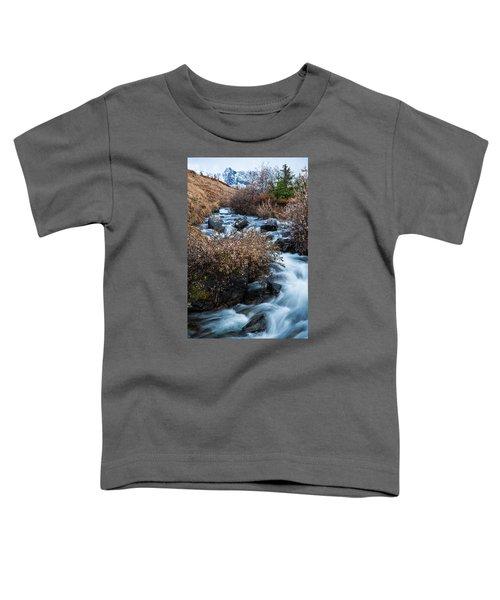Liquid Winter Toddler T-Shirt