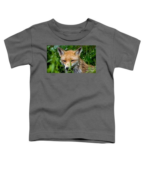 Little Baby Fox Toddler T-Shirt
