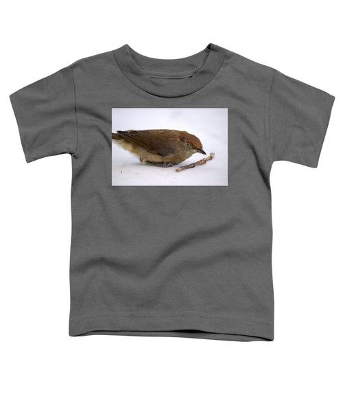Little Bird  Toddler T-Shirt