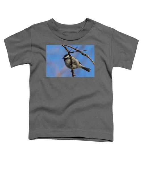 Little Chickadee Toddler T-Shirt