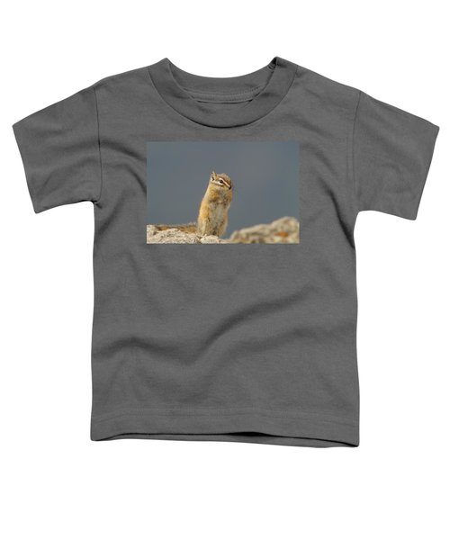 Little Chipmunk Toddler T-Shirt