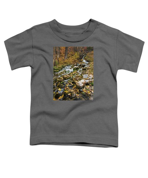 Little Creek Toddler T-Shirt