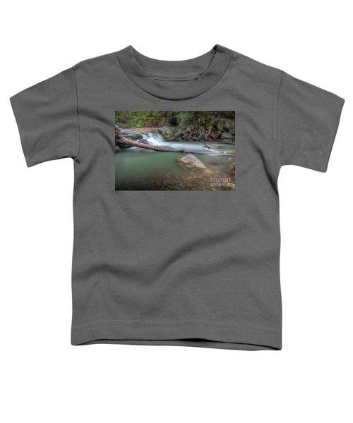 Little Missouri Falls 2 Toddler T-Shirt