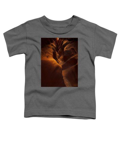 Little Wild Horse Toddler T-Shirt