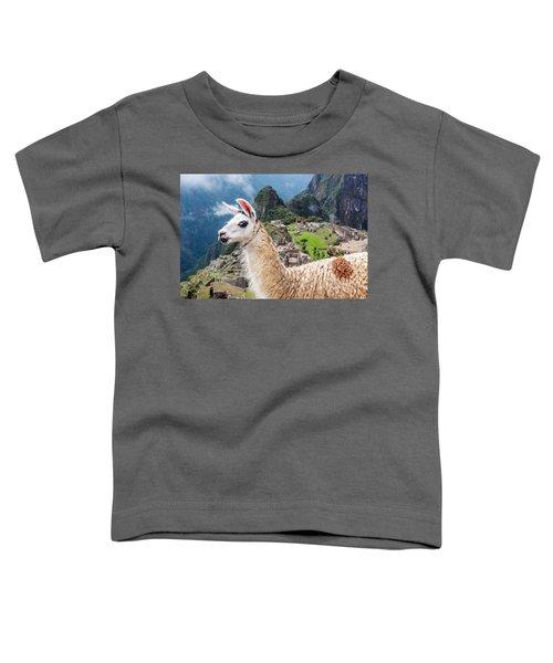 Llama At Machu Picchu Toddler T-Shirt by Jess Kraft