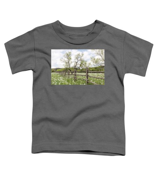 Llano County Wildflowers Toddler T-Shirt