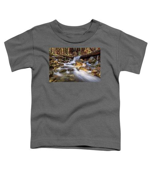 Log Falls On Limekiln Creek Toddler T-Shirt