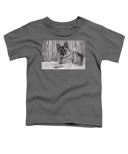 Loki By Fence Toddler T-Shirt