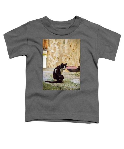 Lone Cat Toddler T-Shirt