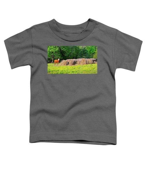 Lone Cow Guard, Smith Mountain Lake Toddler T-Shirt