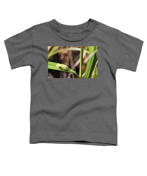 Lone Tree Frog Toddler T-Shirt