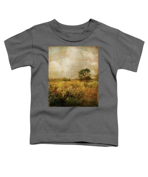 Long Ago And Far Away Toddler T-Shirt