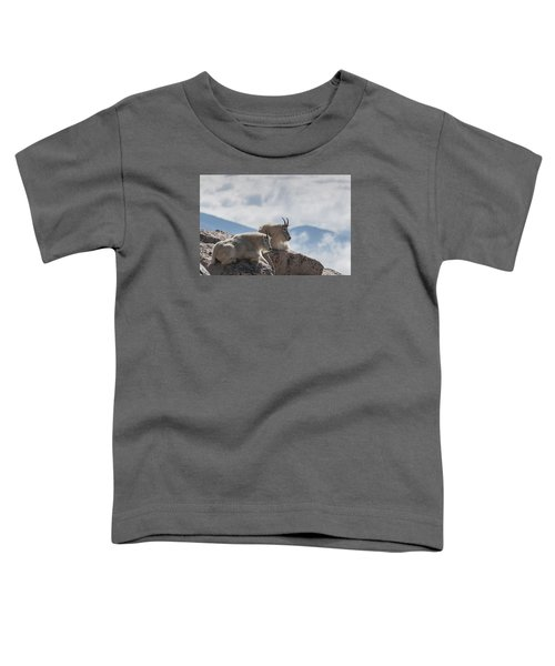 Looking Down On The World Toddler T-Shirt by Gary Lengyel