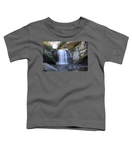 Looking Glass Falls Toddler T-Shirt
