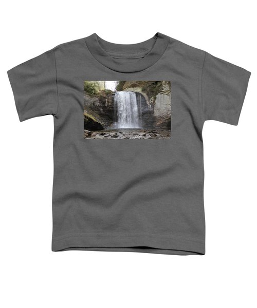 Looking Glass Falls Front View Toddler T-Shirt