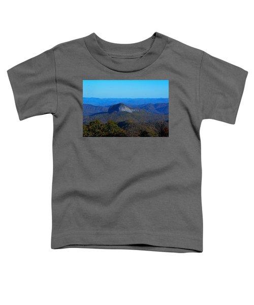 Looking Glass Rock Toddler T-Shirt