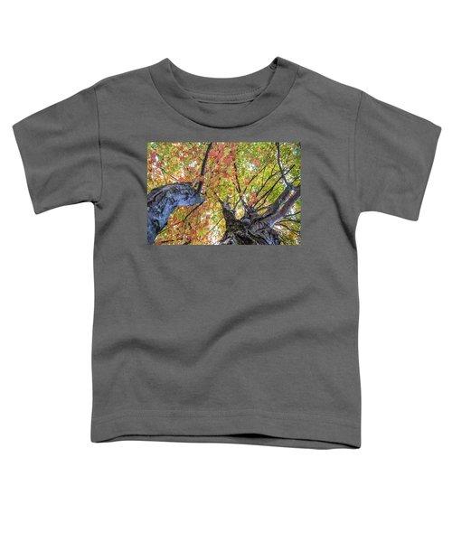 Looking Up - 9670 Toddler T-Shirt