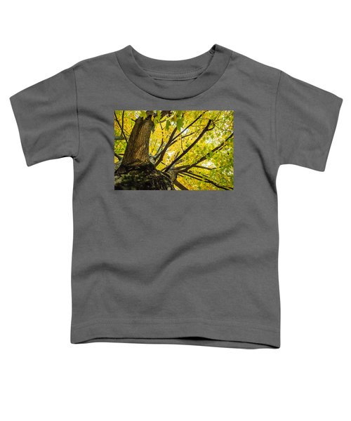 Looking Up - 9676 Toddler T-Shirt